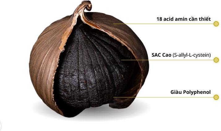 Dong A Diamond Garlic - Black Garlic